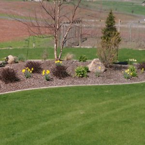 Large Rural Landscape Edging - Right
